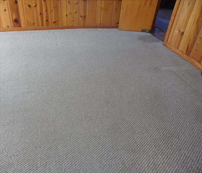 Carpet Cleaning in Meridian After
