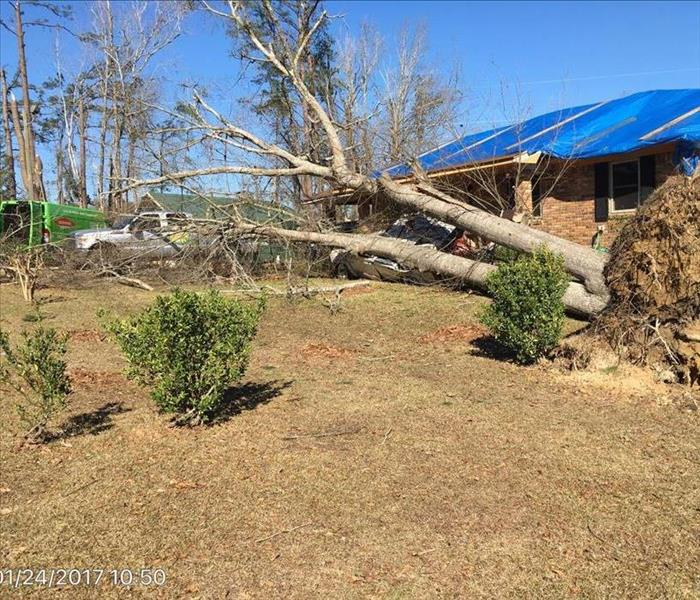 Storm Damage When EF-2 Tornado hit Lauderdale County, SERVPRO was ready!
