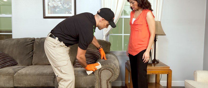 Meridian, MS carpet upholstery cleaning